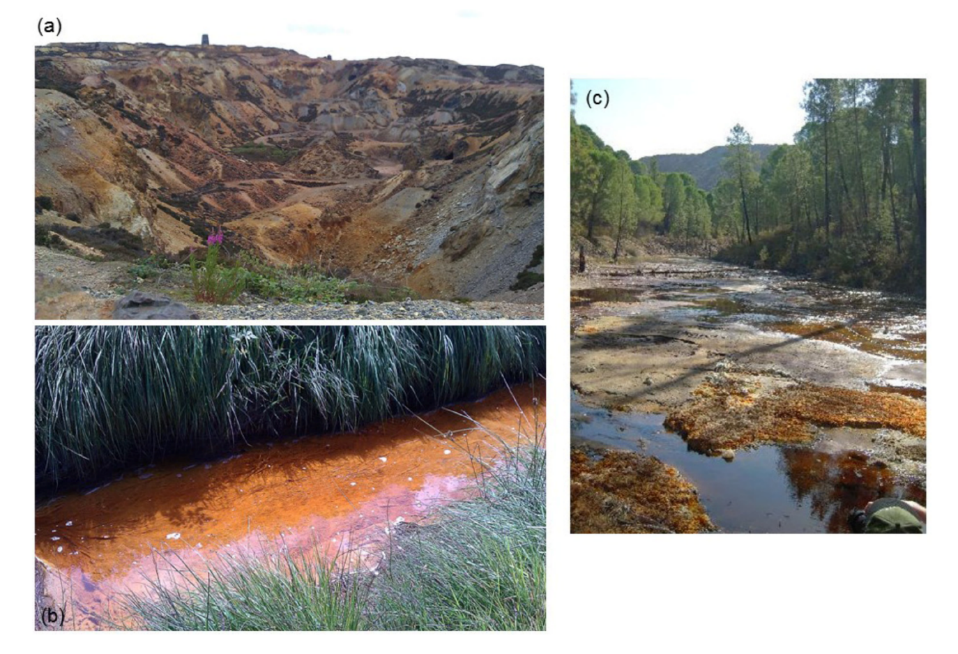 "Figure 1. Examples of ""natural biomines"" [3]: (a) the abandoned opencast operation and (b) the Afon Goch draining the former Mynydd Parys mine in north-west Wales; (c) the Rio Tintillo in south-west Spain, the catchment of waters percolating through a vast area of abandoned mine waste (shown in the back of the image)."